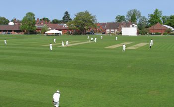 Shrewsbury Cricket